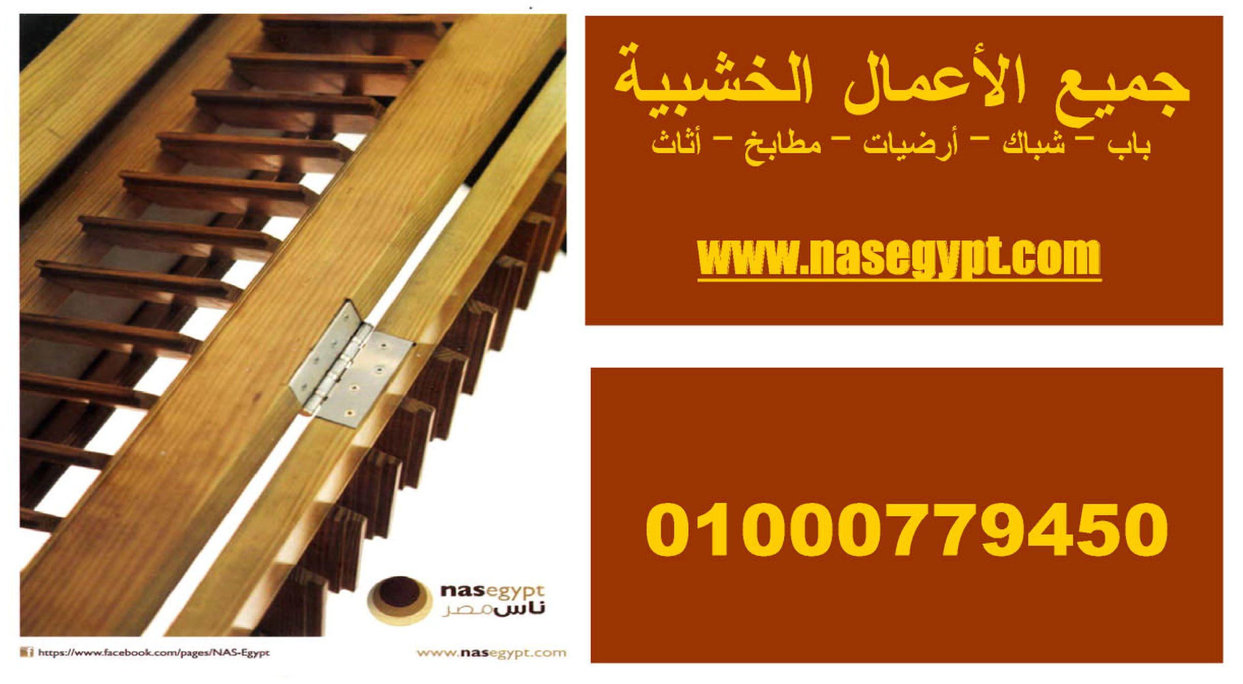 www.nasegypt.com